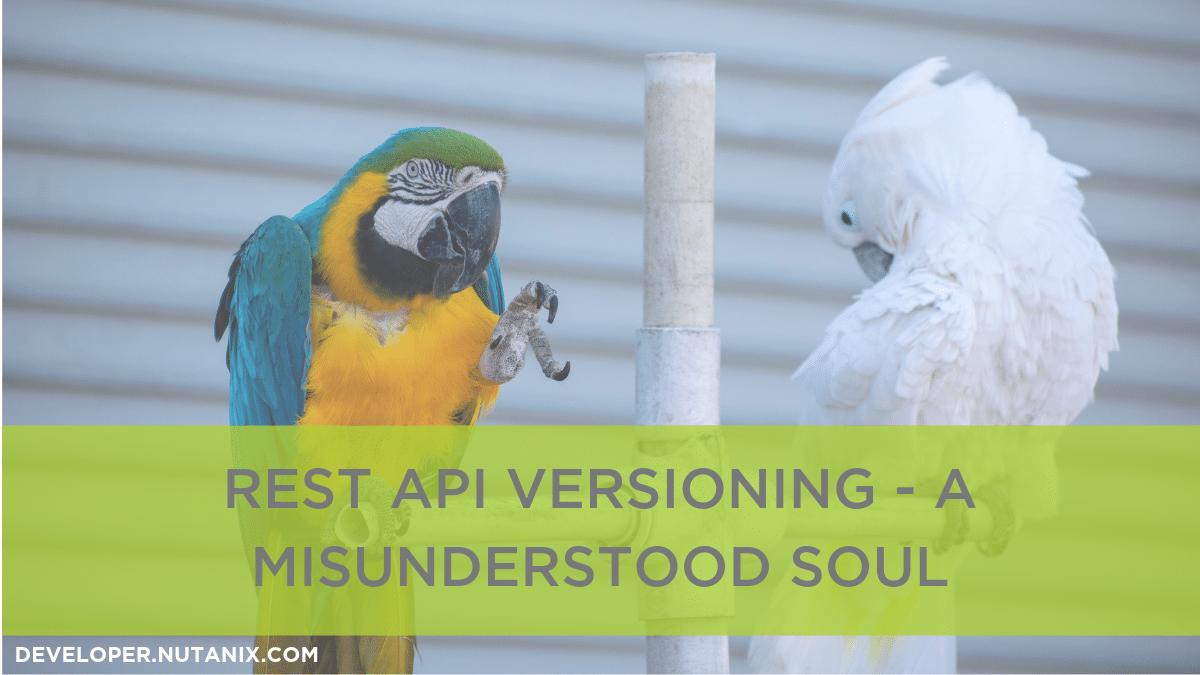 REST API Versioning - A Misunderstood Soul
